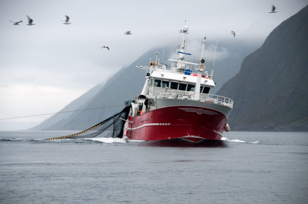 Exporting seafood from Norway to the UK
