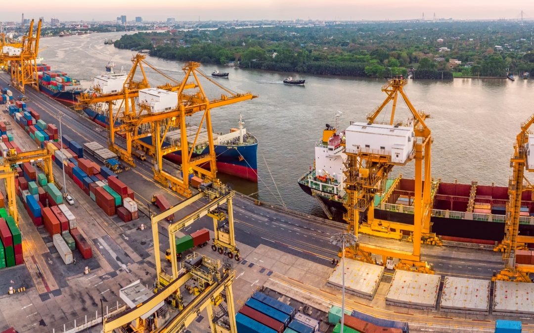 Are bugs and parasites the next big problem for global shipping?