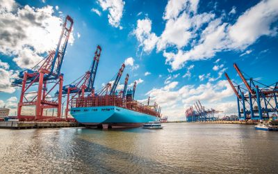 Congestion, empty equipment shortages, port omissions, lack of available haulage….What next for an industry battling to keep up with demand??