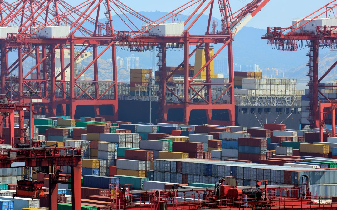 Delays at world's busiest container port as Shanghai struggles with congestion